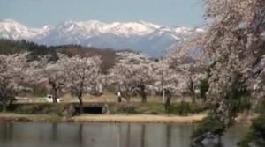 0111.福島県 南湖公園2