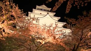 0025.福島県 鶴ヶ城4