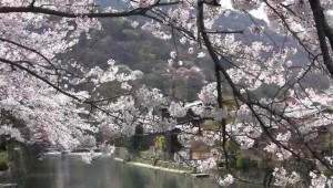 0065.京都府 嵐山3