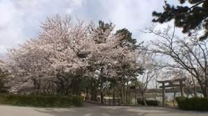 0087.山口県 ときわ公園1