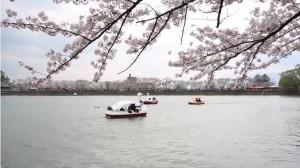 0013.岩手県 高松公園2
