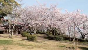 0089.徳島県 西部公園1