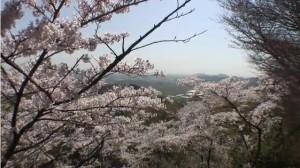 0032.栃木県 太平山2