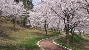 0040.新潟県 村松公園3