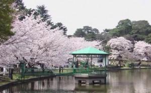 0033.埼玉県 大宮公園1