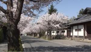 0035.埼玉県 長瀞2