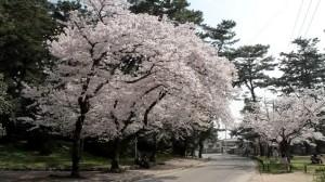 0090.香川県 琴弾公園1