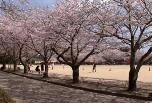 0158.大分県 臼杵城跡3