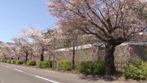 0157.長崎県 島原城3