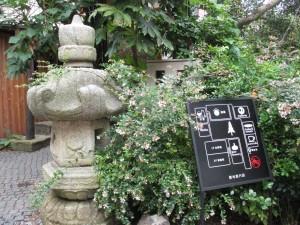 0012.熊澤酒造MOKICHI CAFE5